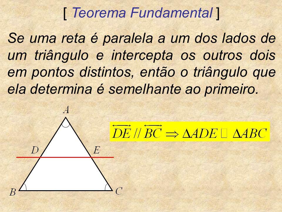 [ Teorema Fundamental ]